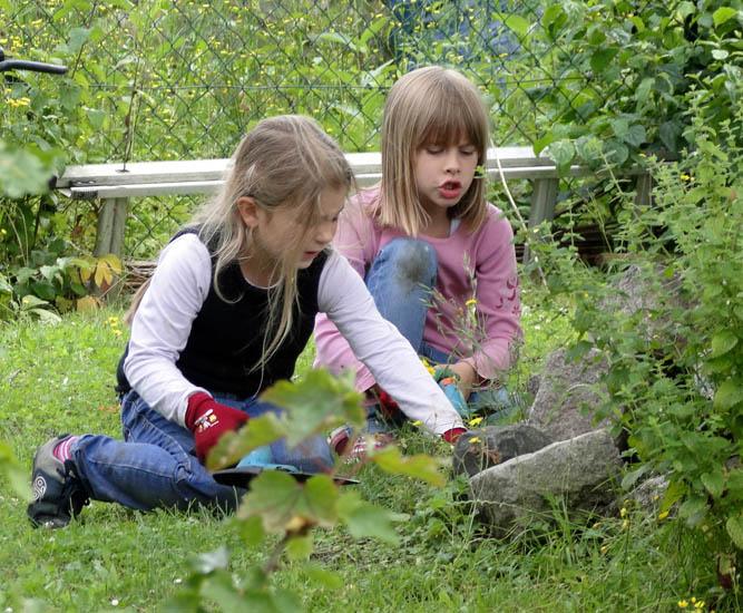 garten ökologisch gestalten